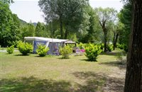 Spacious pitch by the riverside at campsite Les Bords du Tarn - Gorges du Tarn