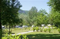 Half sunny pitches - Camping Bords du Tarn - Gorges du Tarn